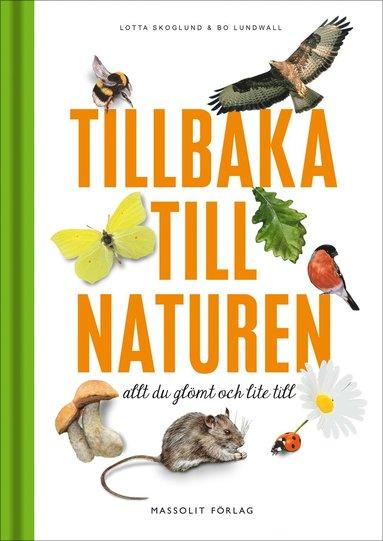 bokomslag Tillbaka till naturen : allt du glömt och lite till