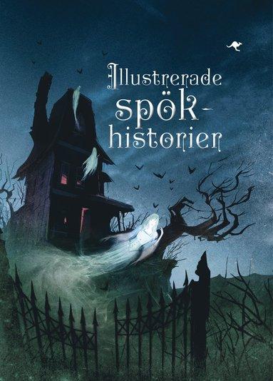 bokomslag Illustrerade spökhistorier
