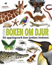 bokomslag Stora boken om djur : ett uppslagsverk över jordens invånare