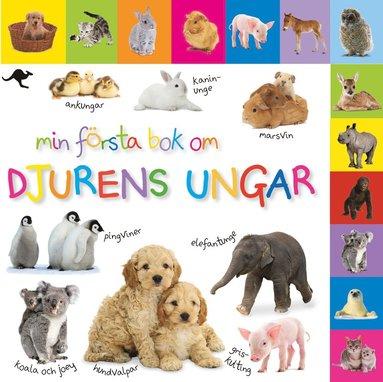 bokomslag Min första bok om djurens ungar