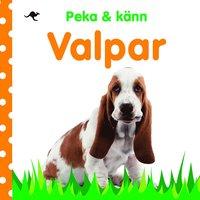 bokomslag Peka och känn : Valpar