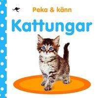 bokomslag Peka och känn : kattungar