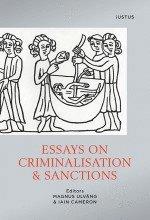 bokomslag Essays on criminalisation & sanctions