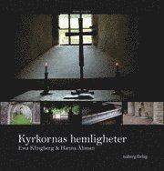 bokomslag Kyrkornas hemligheter : södra Sverige