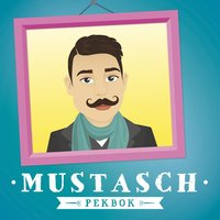 bokomslag Mustasch Pekbok