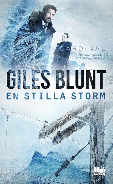bokomslag En stilla storm