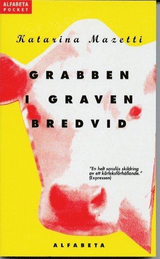 bokomslag Grabben i graven bredvid