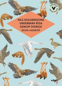 bokomslag Nils Holgerssons underbara resa genom Sverige (lättläst version)