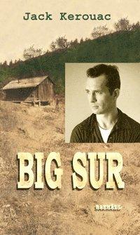 bokomslag Big Sur