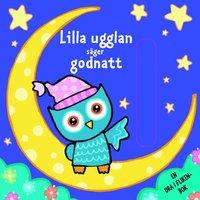 bokomslag Lilla Ugglan säger godnatt