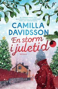 bokomslag En storm i juletid