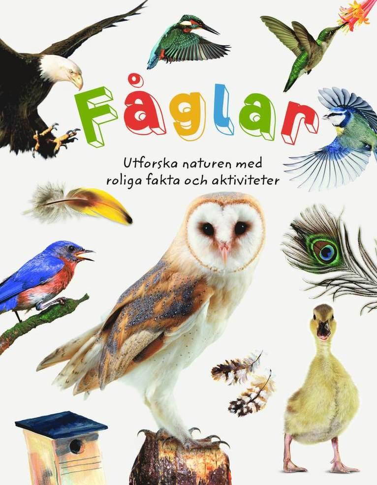 Fåglar : utforska naturen med roliga fakta och aktiviteter 1