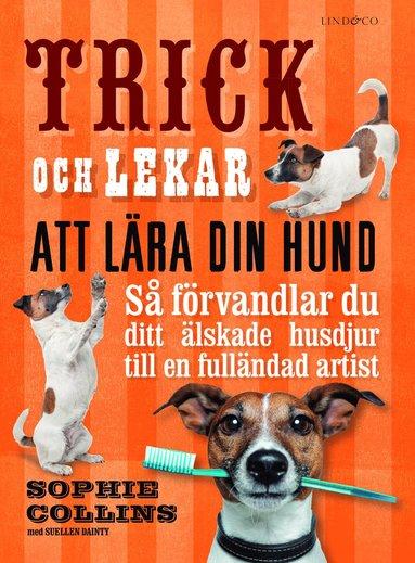 bokomslag Trick och lekar att lära din hund : så förvandlar du ditt älskade husdjur..