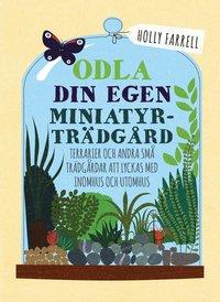 bokomslag Odla din egen miniatyrträdgård : Terrarier och andra små trädgårdar att lyc