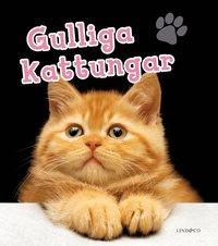 bokomslag Gulliga kattungar
