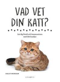 bokomslag Vad vet din katt? : lär dig förstå och kommunicera med ditt husdjur