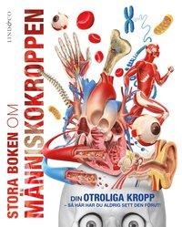 bokomslag Stora boken om människokroppen : din fantastiska kropp som du aldrig förr sett den