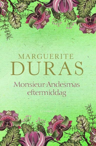 bokomslag Monsieur Andesmas eftermiddag