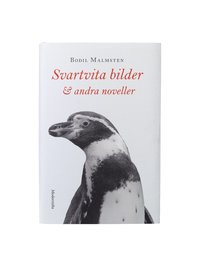 bokomslag Svartvita bilder & andra noveller