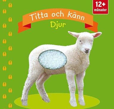 bokomslag Titta och känn. Djur