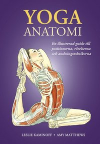 bokomslag Yoga : anatomi