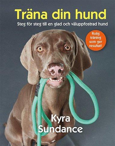 bokomslag Träna din hund : steg för steg till en glad och väluppfostrad hund