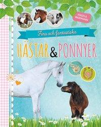 bokomslag Fina och fantastiska hästar och ponnyer