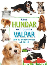 bokomslag Söta hundar och busiga valpar