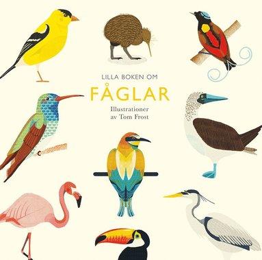 bokomslag Lilla boken om fåglar