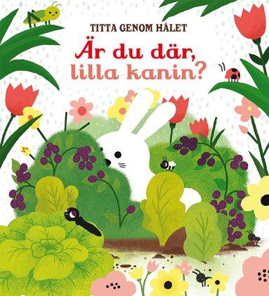 bokomslag Titta genom hålet: Är du där, lilla kanin?