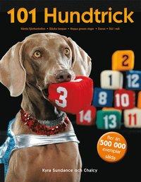 bokomslag 101 hundtrick