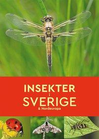 bokomslag Insekter i Sverige & Nordeuropa