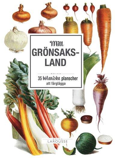 bokomslag Mitt grönsaksland : 35 botaniska planscher att färglägga