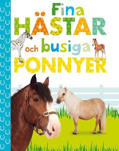 bokomslag Fina hästar och busiga ponnyer