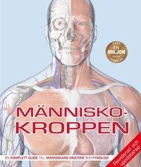 bokomslag Människokroppen : den kompletta guiden till människans anatomi