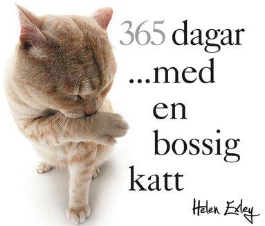 bokomslag 365 dagar med en bossig katt