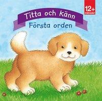 bokomslag Titta och känn. Första orden