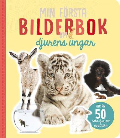bokomslag Min första bilderbok om djurens ungar