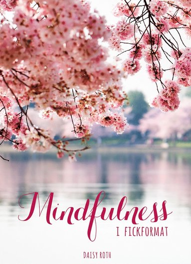 bokomslag Mindfulness i fickformat