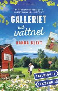 bokomslag Galleriet vid vattnet