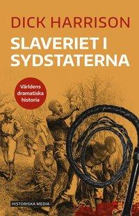 bokomslag Slaveriet i Sydstaterna