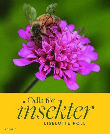 bokomslag Odla för insekter