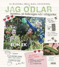 bokomslag Jag odlar : inomhus, på balkongen och i trädgården