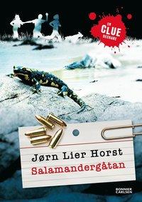 bokomslag Salamandergåtan