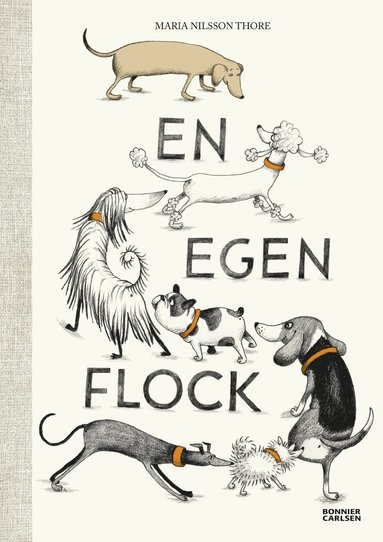 bokomslag En egen flock