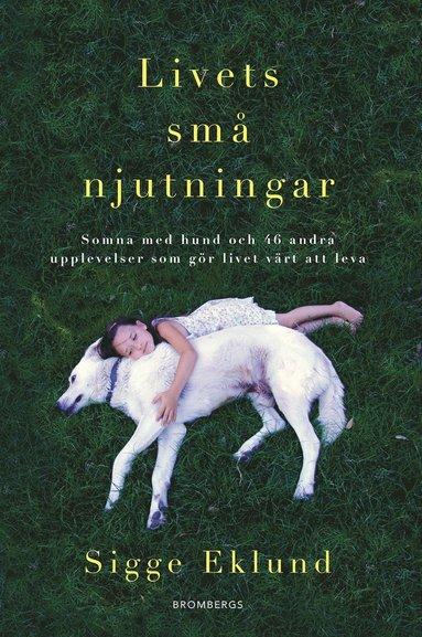 bokomslag Livets små njutningar : somna med hund och 46 andra upplevelser som gör livet värt att leva