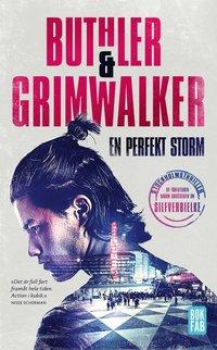 bokomslag En perfekt storm