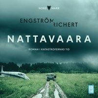 bokomslag Nattavaara : roman i katastrofernas tid