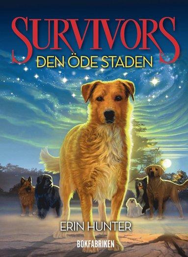 bokomslag Survivors serie 1 : Den öde staden