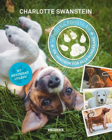 bokomslag Hundens första år : en handbok för alla hundägare